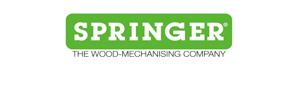 logo_springer